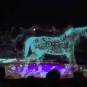 Цирк с 250-летней историей отказался от всех животных и предложил нечто получше